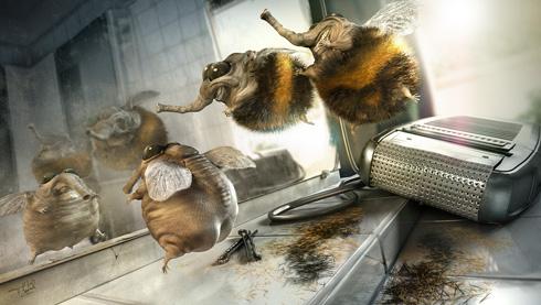 Framebox Bumblebee