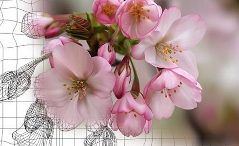 Spring Flowers, by Oleg Rogoznev